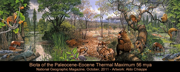 Biota of PETM: Paleocene-Eocene Thermal Maximum - evolution-involution.org