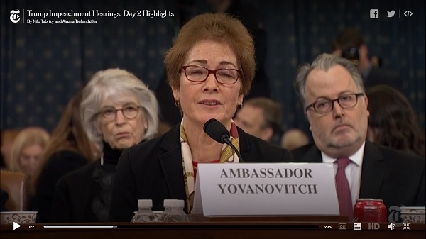 Video - NY Times clips of Yovanavitch testimony